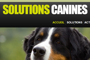 Le site Solutions Canines